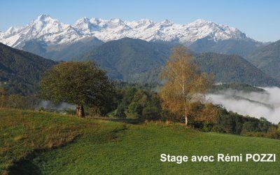 Stage Rémi Pozzi
